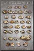 """Art.com The Oyster Poster"""" Wall Art"""