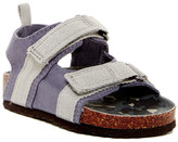 Osh Kosh OshKosh Seaton Sandal (Toddler & Little Kid)