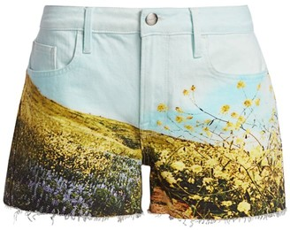 Frame Le Grand Garson Field Print Shorts