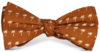 Tom Astin Palm Down Bow Tie