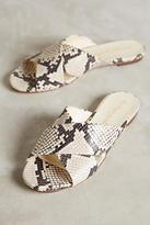 Bettye Muller Snake Slides