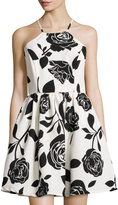 Romeo & Juliet Couture Floral-Print Fit & Flare Halter Dress, White/Black