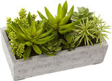 Asstd National Brand Nearly Natural Succulent Garden With Concrete Planter