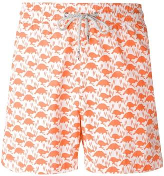 Love Brand & Co. Turtle Print Swim Shorts
