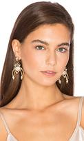 Elizabeth Cole Earrings in Metallic Gold.