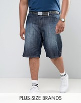 Loyalty & Faith Loyalty And Faith Plus Brockers 5 Pocket Denim Shorts With Belt