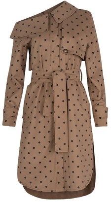 Silvia Tcherassi Ancona Polka Dot Trench Dress