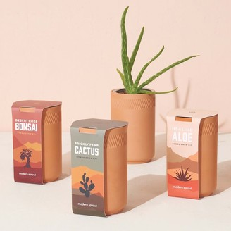 west elm Modern Sprout Terracotta Assorted Grow Kit