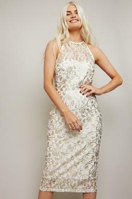 Little Mistress Ceres White Lace Gold Foil Bodycon Midi Dress