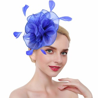 vamei Fascinator Hat Hair Flower Feather Mesh Ladies Net Veil Party Wedding Hat Ascot Hats Elegant Flower Derby Hat with Clip Headband for Women (B-Blue)