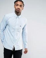 Lacoste Live Oxford Shirt Buttondown Small Croc Logo Slim Fit in Blue