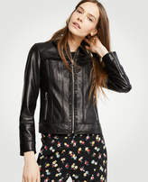 Ann Taylor Ruffle Leather Jacket