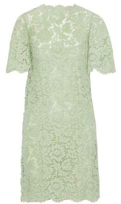 Valentino Corded Lace Cotton-blend Dress