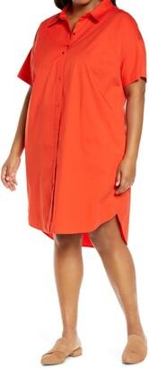 Eileen Fisher Organic Cotton Blend Shirtdress
