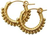 Viv&Ingrid Gold Wrap Hoops