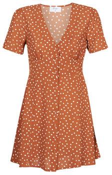Betty London MILPO women's Dress in Brown
