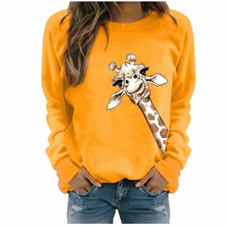 Jiegorge Women's Pullover Sweaters Winter Womens Casual Long Sleeve Tops Ladies Print Sweatshirt Blouse Tee Sweater