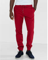 Express red cotton jogger pant