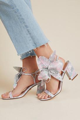 Cecelia New York Hibiscus Block Heels By in Blue Size 6