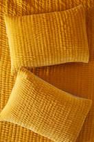 Anthropologie Artisan Quilts By Kantha-Stitched Velvet Shams, Set of 2