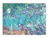 "McGaw Graphics Irises In The Garden by Vincent Van Gogh 20""x28"" Art Print Poster"