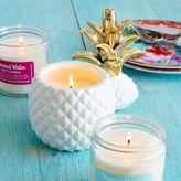 Sur La Table Pineapple Coconut Soy Candle