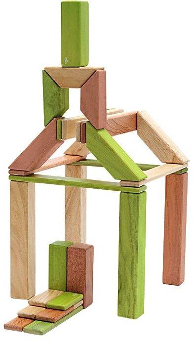 Green Baby Tegu Explorer Set: Jungle Magnetic Blocks (40 pcs)