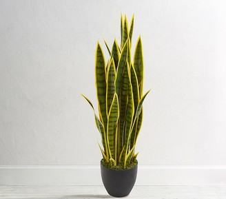 Pottery Barn Kids Sansevieria Artificial Plant