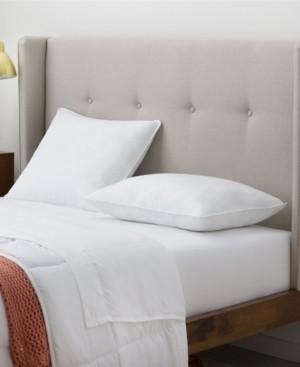 Linenspa Signature Firm 2-Pack Pillow, Standard