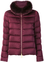 Herno zipped padded jacket - women - Feather Down/Polyamide/Polyester - 38
