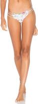 San Lorenzo Braided Strap Bikini Bottom