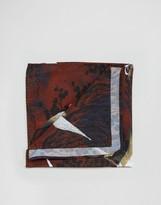Asos Pocket Square In Stork Print