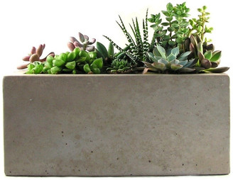 Rough Fusion Rectangular Concrete Planter
