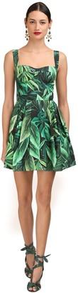 Dolce & Gabbana Leaves Printed Cotton Poplin Mini Dress