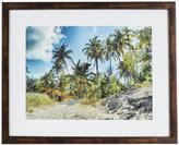 "Pinnacle 17.25 in. x 21.75 in. ""Palm Tree Cove"" Framed Wall Art"