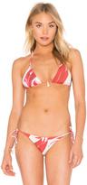 Clube Bossa Olin Bikini Top
