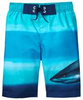 Crazy 8 Shark Stripe Swim Trunks