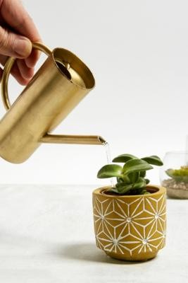 Urban Outfitters Roxy Gold Mini Watering Can - Gold ALL at