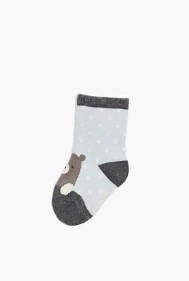 Country Road Bear Sock