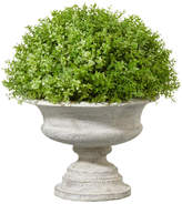 OKA Artificial Oregano Plant with Urn