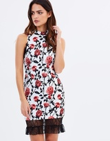Asilio True Match Dress