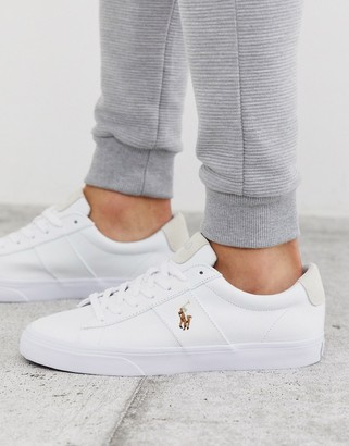 Polo Ralph Lauren sayer canvas trainer with multi polo player in white-Navy