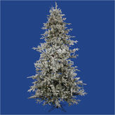 Asstd National Brand 12' Pre-Lit Frosted Whistler Fir Artificial Christmas Tree - Clear Dura Lights