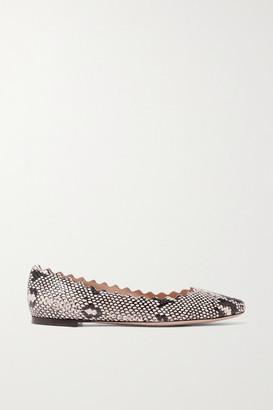 Chloé Lauren Scalloped Snake-effect Leather Ballet Flats - Snake print