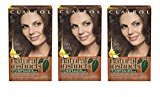 Clairol Natural Instincts 13 Suede Light Brown 1 Kit (Pack of 3) (packaging may vary)