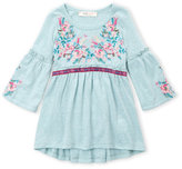 Baby Sara Infant Girls) Floral Embroidered Dress