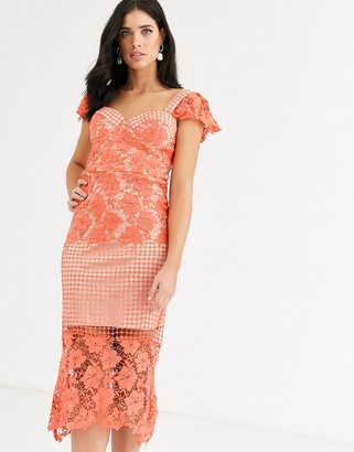 Liquorish lace panel midi dress in coral