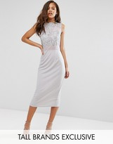 Club L Tall Allover Lace Applique Top Midi Pencil Dress