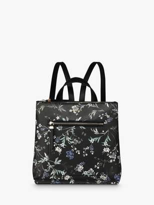 Fiorelli Finley Zip Top Backpack, Floral