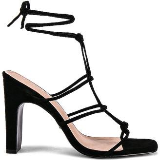 Raye Havoc Heel